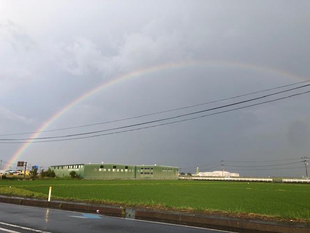 虹を見ました!